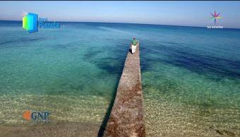 Por el Planeta, Cuba, sus, reservas marinas, fauna marina, programas de naturaleza