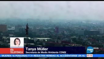 Tanya Müller, Medio Ambiente, CDMX, materia ambiental