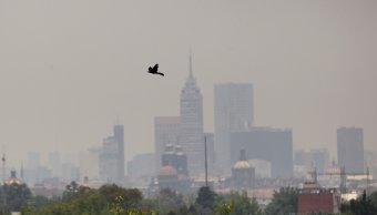 Ciudad mexico, contaminacion ciudad mexico, Fase 1 contingencia ambiental, Valle mexico, Contaminacion mexico,