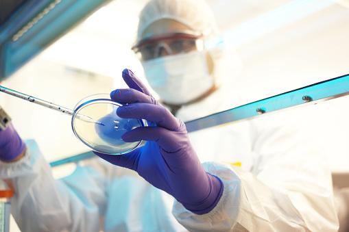 La toma de muestras de ADN será un procedimiento gratuito (Getty Images/Archivo)