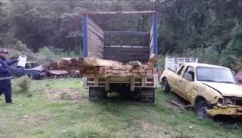 Un camion con madera ilicita es asegurado