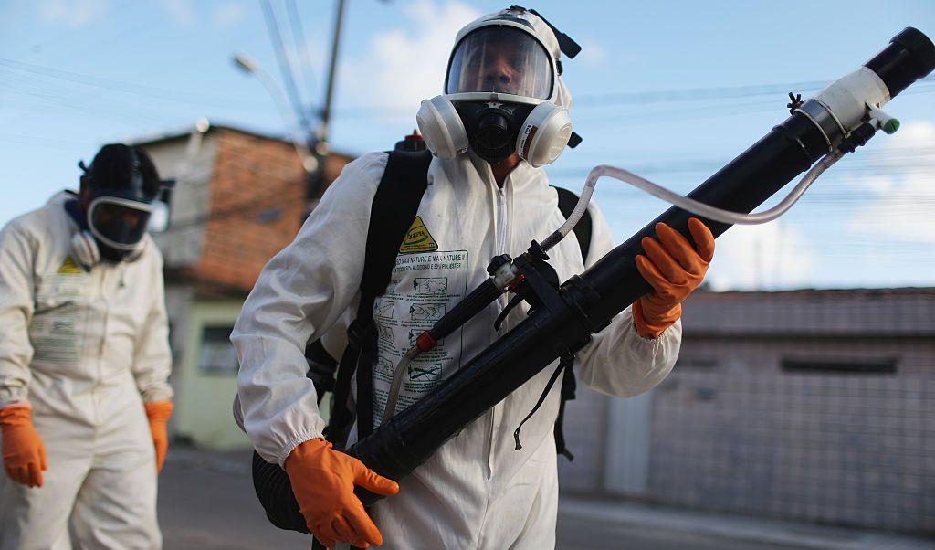 Zika, mosquito, Brasil, salud, enfermedad, emergencia,