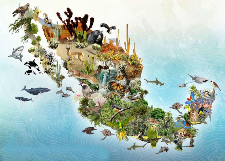 Conmemoran el Día Internacional de la Diversidad Biológica