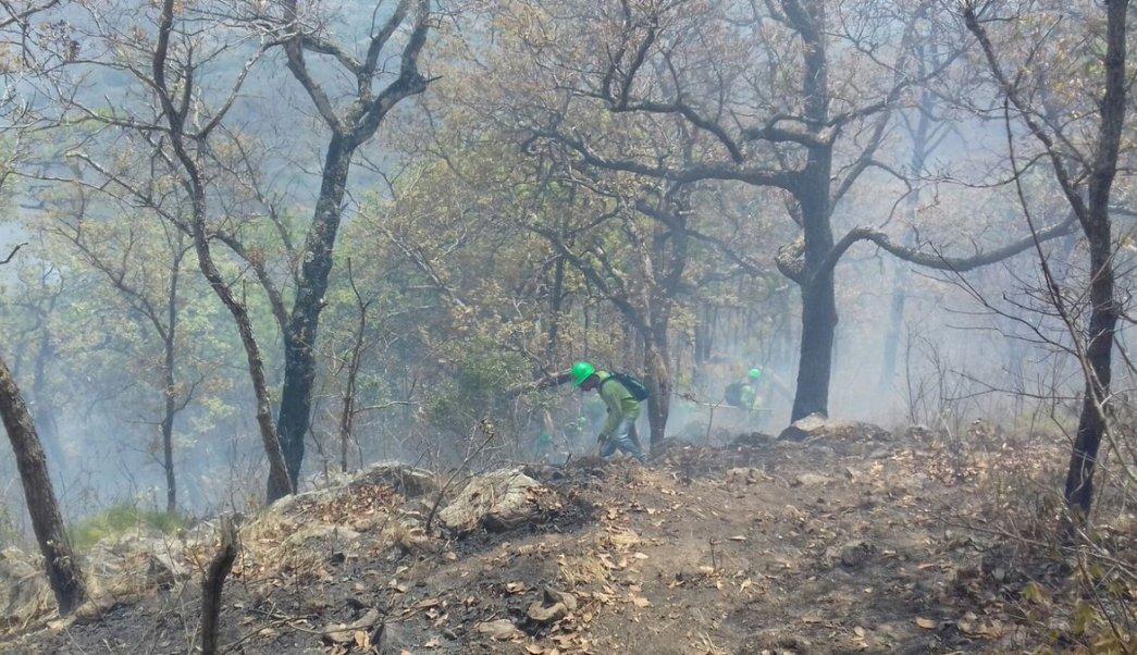 Protección Civil Chiapas pide extremar precauciones para evitar incendios forestales