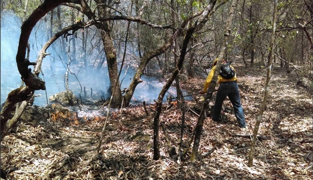 Incendio forestal en la Trinitaria, Chiapas. (Twitter @pcivilchiapas)