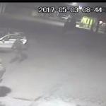 Palmarito, Puebla, Video ejecucion militar palmarito, Noticias palmarito