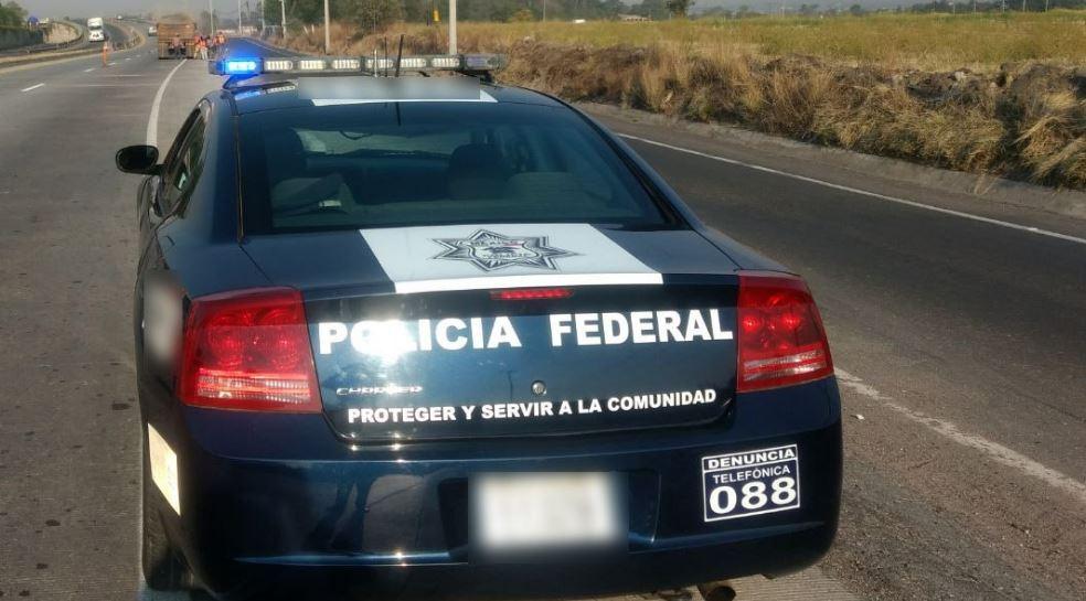 Droga, Sintetica, Cns, Sinaloa, Policía, Federal, Noticias