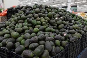 Profeco revisa los precios del aguacate en supermercados