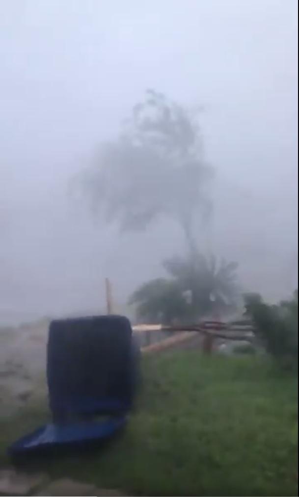 Tormenta afecta infraestructura en Texas y tamaulipas