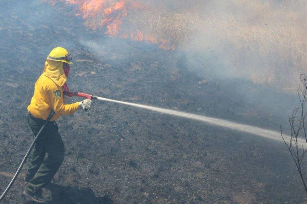 2 de cada 5 incendios forestales en Puebla son intencionales: Conafor