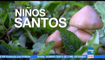 noticias, forotv, Niños Santos, tradición antigua, Sierra Mazateca, Oaxaca