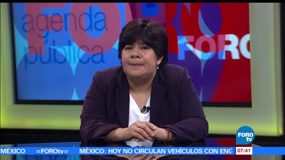María de la Luz Estrada, Observatorio Nacional Ciudadano, Feminicidio, violencia, México