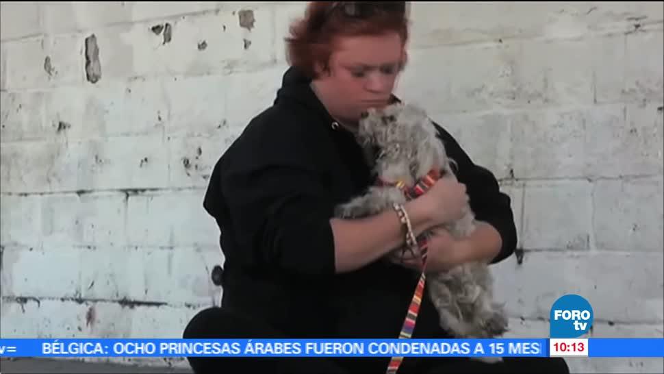 mascotas, familia, Lucía Legorreta de Cervantes