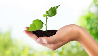 Conéctacte con tu entorno en el Día Mundial del Medio Ambiente