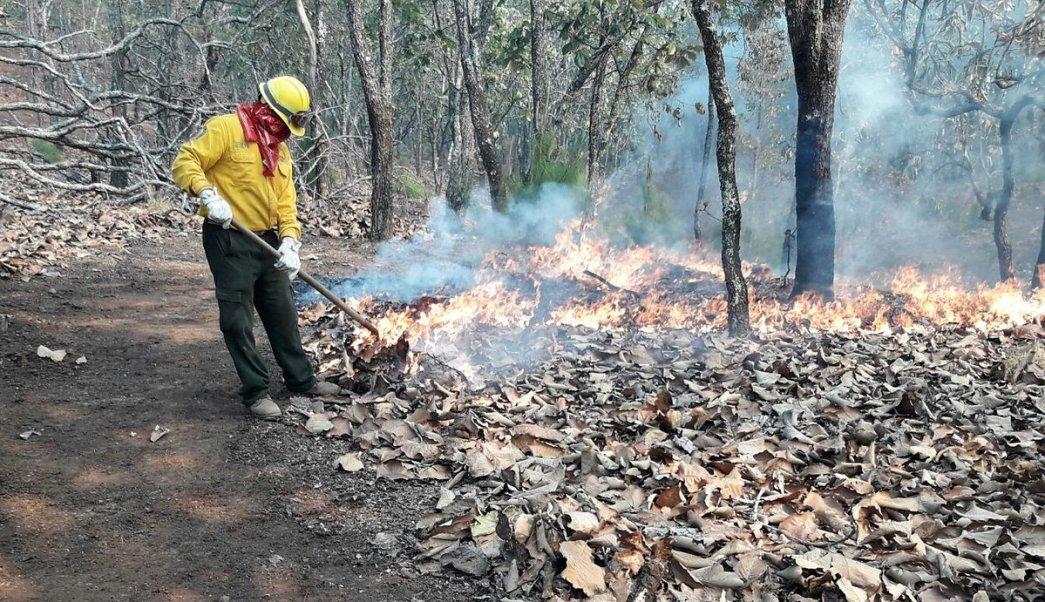 Continúa temporada de incendios forestales en Veracruz