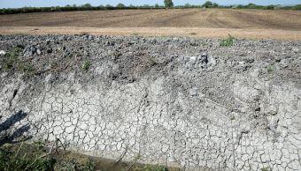Degradación ecológica y sequía afectan a Sonora