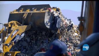 Facultad, Química, UNAM, desarrolla, enzima, degradar plásticos