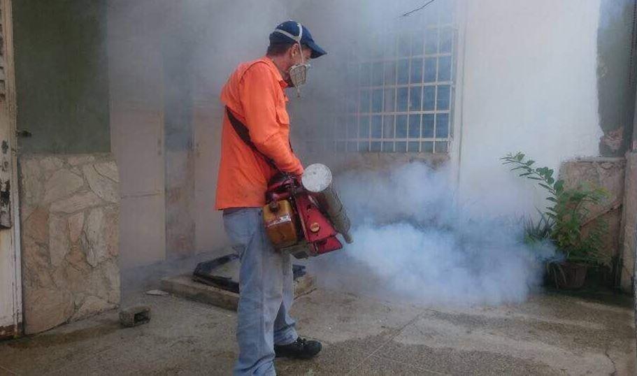Refuerzan, Fumigación, Mosquitos, Zika, Dengue, Chikungunya, Propagación