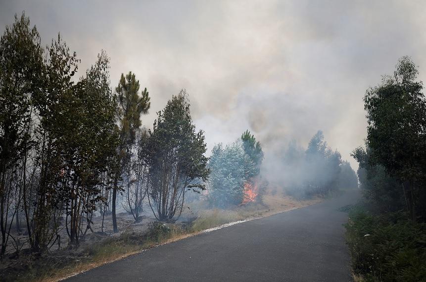 Las llamas y el humo de un incendio forestal se ven cerca de Gois, Portugal (Reuters)