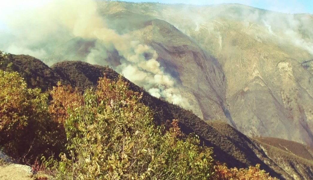 Reportan, Fuera de control, Incendio forestal, Coahuila, Medio Ambiente