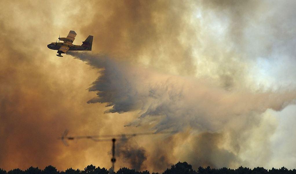 Portugal, incendio, forestal, bomberos, 64 muertos, heridos, Protección Civil