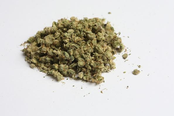 Monticulo de marihuana desgreñada incautada por las autoridades