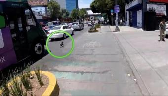 avenida Revolución, video viral, Twitter, perro