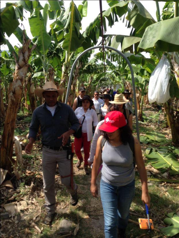 Estudiantes analizan relacion jornaleros empresarios en Colima