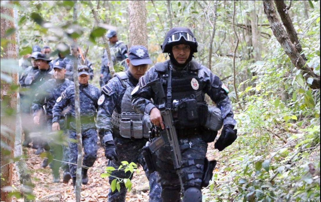 Policias federales ejecutan operativo ambiental