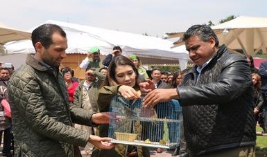 Reintegran a 58 ejemplares de vida silvestre a su hábitat en Edomex