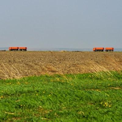 Caen exportaciones agrícolas de EU a México por fricción del TLCAN