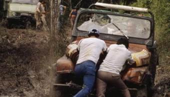 Selva de Calakmul, talamontes, maderas preciosas, selva,