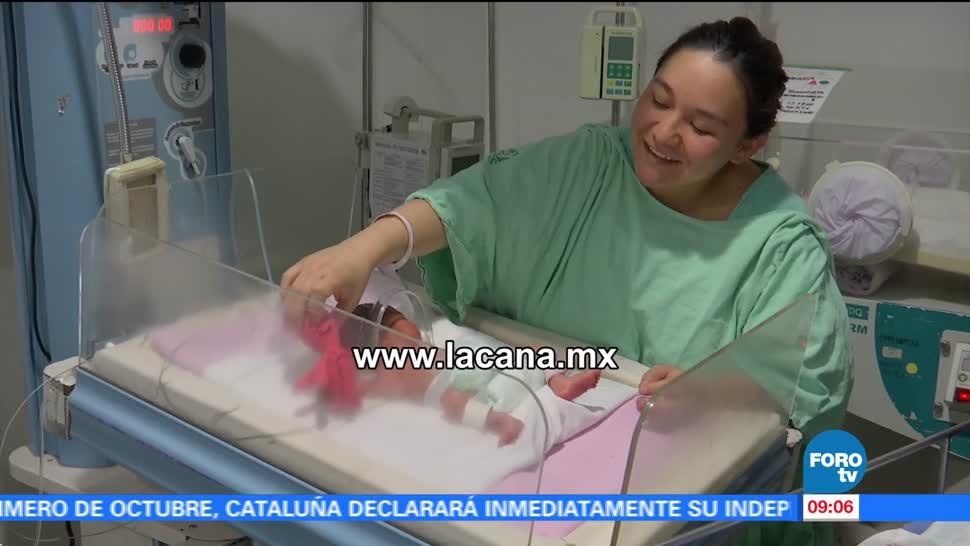 Héctor Alonso, labor, Fundación 'La Cana', campaña 'Pulpos con causa'