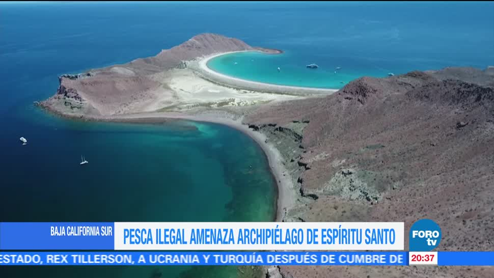 Pesca, ilegal, amenaza, Archipiélago, Espíritu Santo, BCS,