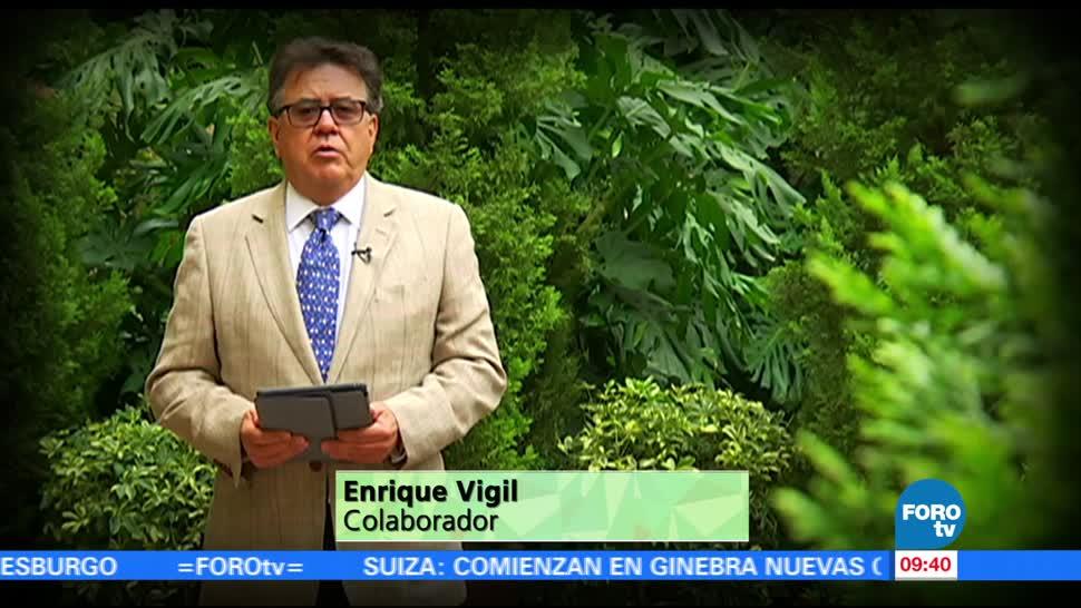 maestro, Enrique Vigil, reportaje. índice de libertad humana