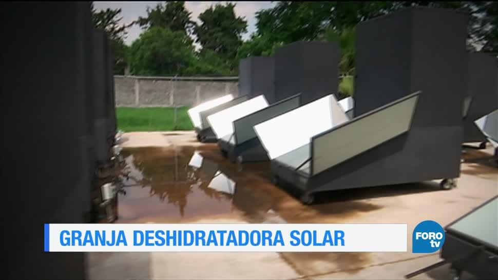 Una granja, deshidratación, solar, Xochimilco