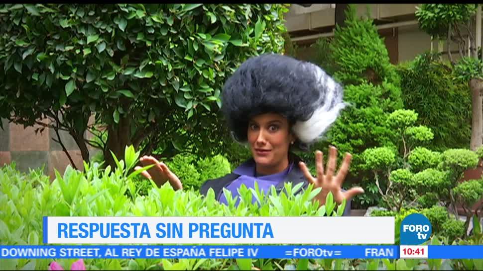 noticias, forotv, Respuestas sin preguntas, Sofía Escobosa, Ximena Cervantes, Respuestas