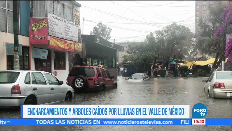 Lluvias Caida arboles Se registran Ciudad de Mexico Encharcamientos Avenidas principales