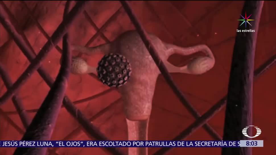 Riesgos Contraer VPH Virus Papiloma Humano