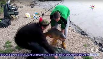 Pescador, pez, escapa, manos