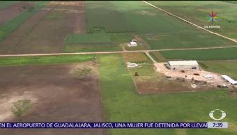 Deforestación afecta selva Quintana Roo