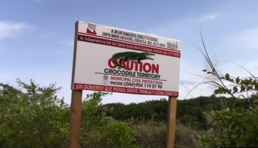 Autoridades de oaxaca advierten de cocodrilos en la costa