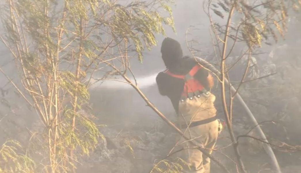 Controlan incendio en el río Santa Catarina, NL