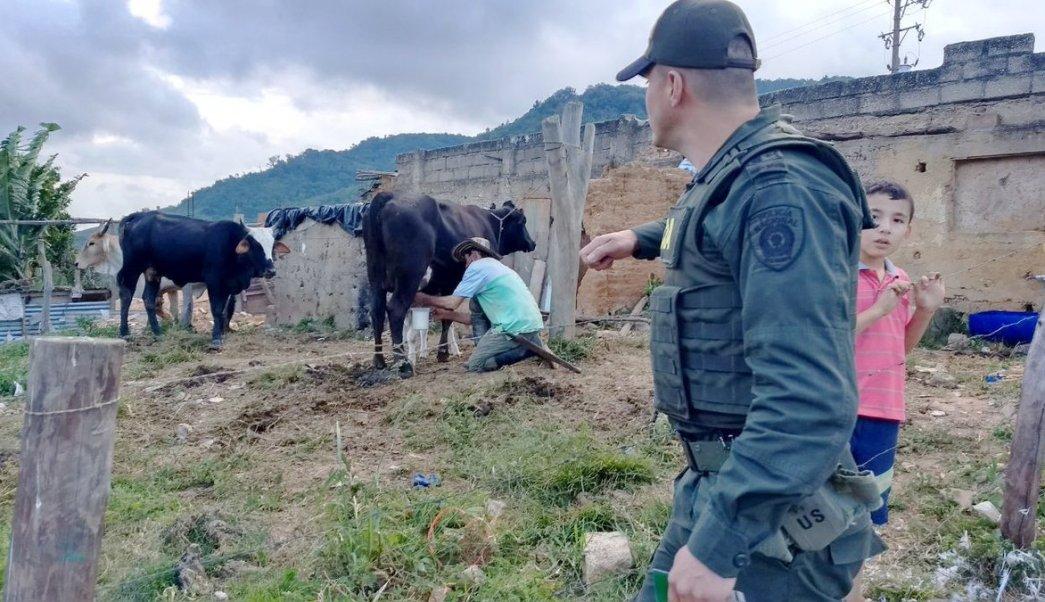 Colombia, sanidad, fiebre aftosa, carne, México, importación,