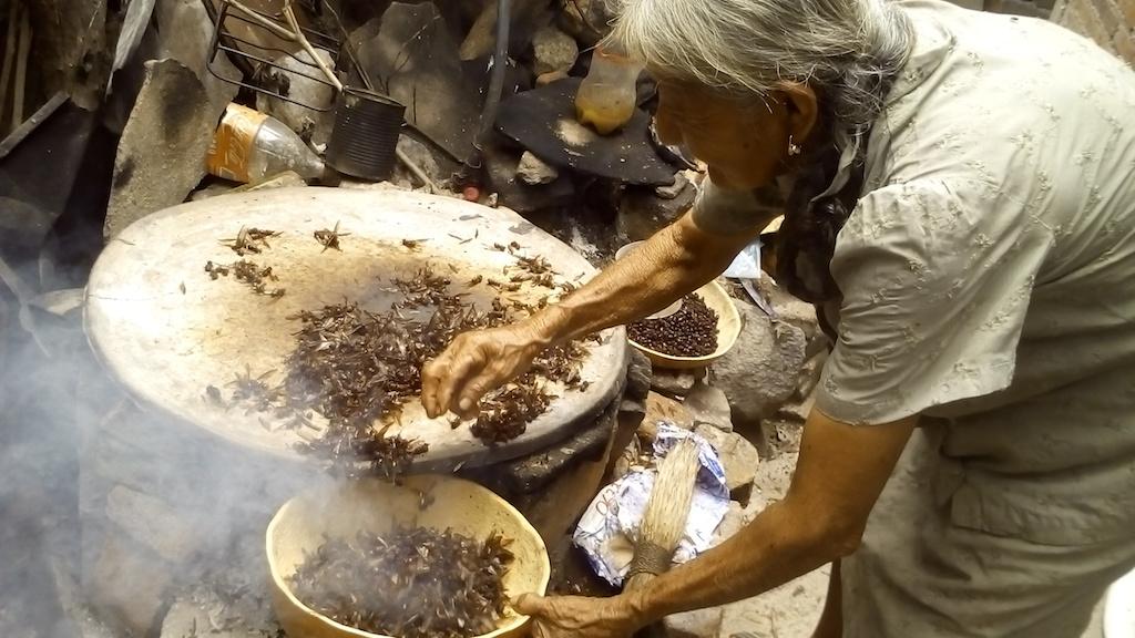 gastronomía oaxaqueña, chicatanas, hormigas, platillos