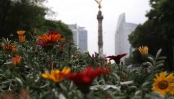 En región del Valle de México persistirá este domingo el potencial de tormentas (Notimex)