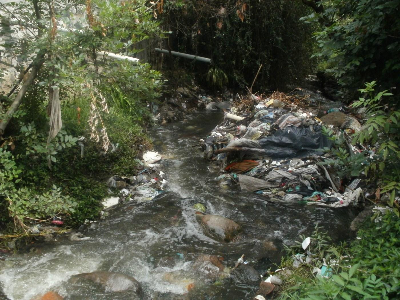 envenenan el agua del Lago de Texcoco.