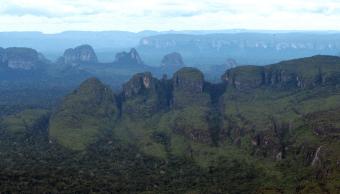 Parque Nacional de Colombia libre de cultivos de coca