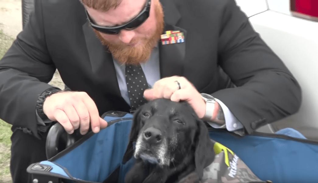 perro soldado, marine, Cena, despedida