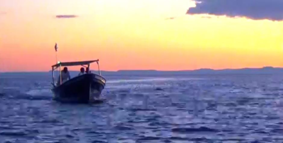 Pesca ilegal en Baja California Sur